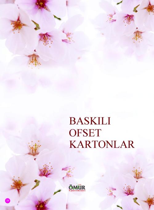 OFSET BASKILI KARTON